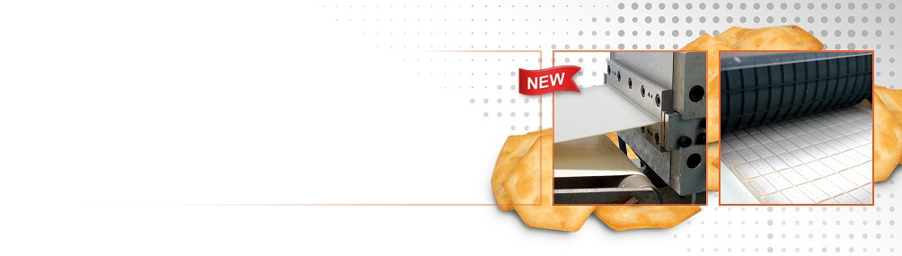<b>NEW Extruded Sheeted Snacks</b><p>Create exciting taste and texture combinations with high consumer appeal using our innovative process.