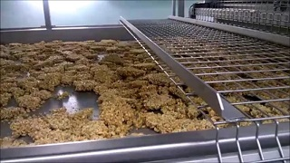 Granola Production